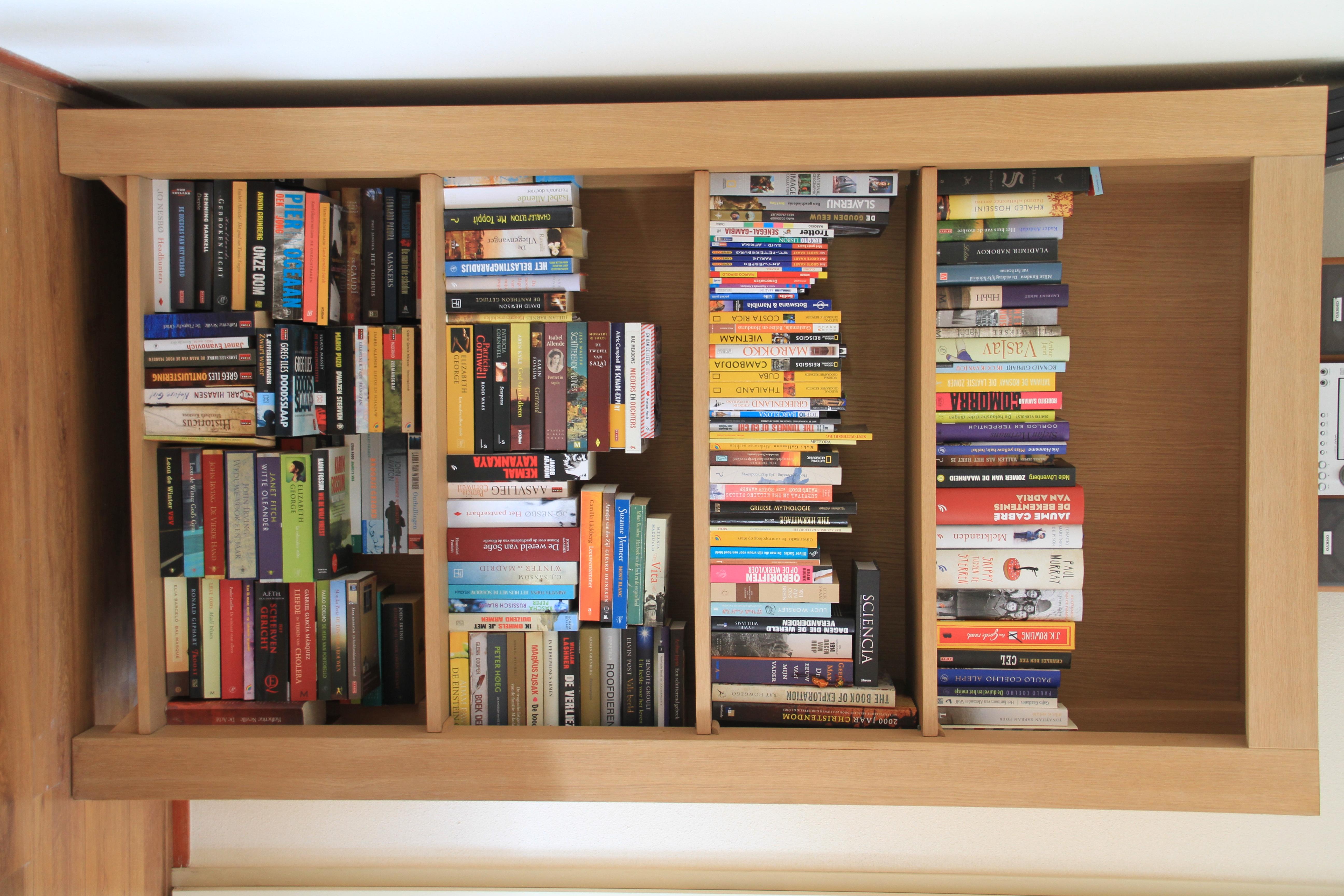 Boekenkast In Woonkamer : Woonkamer met moderne boekenkast stock illustratie illustratie