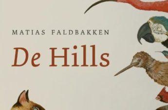 De Hills van Matias Faldbakken