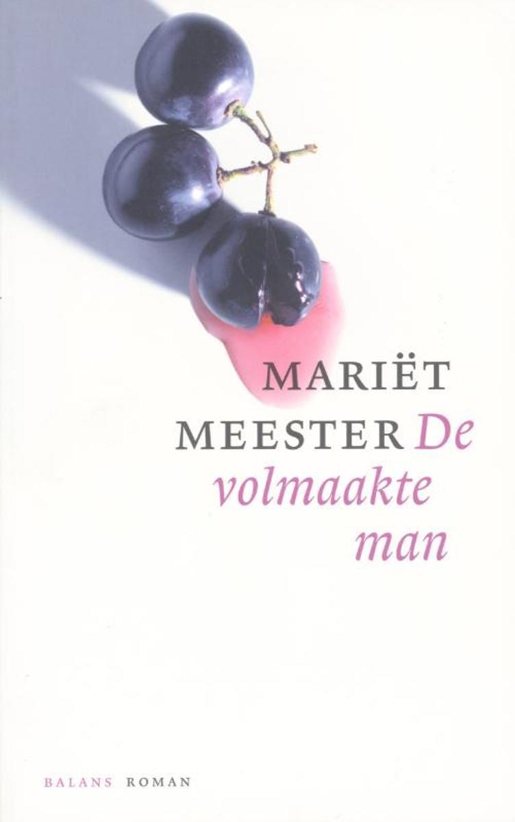 Mariet Meester De volmaakte man
